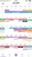 month view in TimeTree app