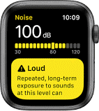 Face of watch in Noise app