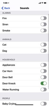 screen shot of iPhone sound recognition menu